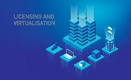 Licensing virtualised environments